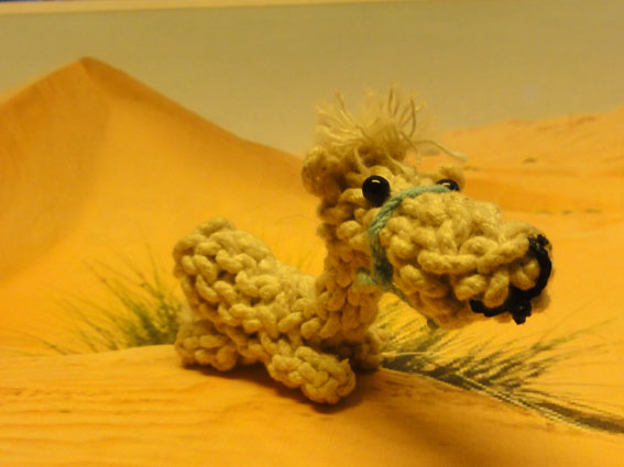knotted animal camel